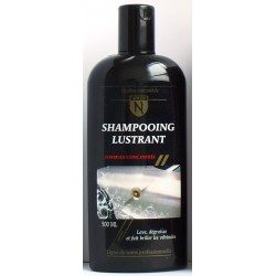 Shampooing lustrant Gold'N 500 ml